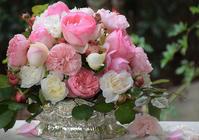 Garden Storyさんにて「実録!バラがメインの庭づくり第11話~」がアップ頂きました。 - バラとハーブのある暮らし Salon de Roses
