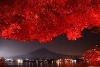 令和2年11月の富士(27)河口湖夜の紅葉と富士 - 富士への散歩道 ~撮影記~