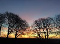 夢の叶え方がわかると、人生がどんどん変容してきます - イギリス ウェールズの自然なくらし