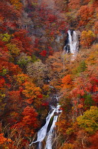 秋の霧降滝 - 風の香に誘われて 風景のふぉと缶