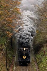 12月もよろしくお願いいたします。 - 蒸気屋が贈る日々の写真-exciteVer