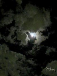 満月は自分の「陰」に気づくとき - Miwaの優しく楽しく☆