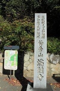 源氏の寺/満願時の晩秋 - 浜千鳥写真館