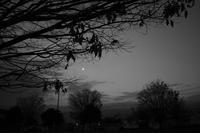 小さな月 - 旅する       memephoto