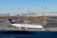 スタアラ343 - K's Airplane Photo Life