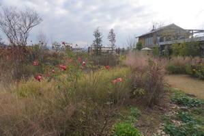 高松「仏生山の森ガーデン」 -