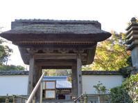 鎌倉散策11月②  長寿寺 - うりぼうニュース