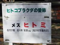 盛岡のヒトコブラクダ ヒトミさんの最初で最後のガイド - こらくふぁーむ