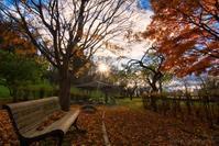みちのく髙松公園3 - みちのくの大自然