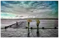 海を見ていた午後 - コバチャンのBLOG