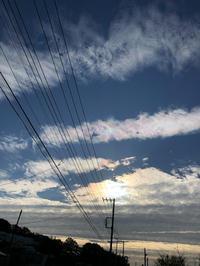 自立生活センターでの現場実習 - Flying Kite@Japan!