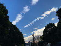 sunny day - Tears of joy