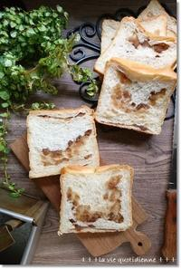 マロングラッセどこ行ったぁ~!?(笑)na真四角パンとリースプランターの植え替え - 素敵な日々ログ+ la vie quotidienne +