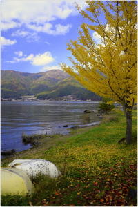 河口湖の秋景 - caetla