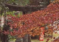 榊山神社晩秋 - 静かに過ごす部屋