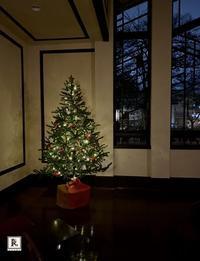 「静かな夜のフラワーレッスン」 先日はまだ秋のお花でのレッスンでしたが そろそろ会場はクリスマスの装いに - Bouquets_ryoko
