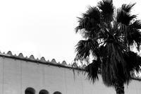 アラビア風あるいはアフリカ北岸風 - 散歩と写真
