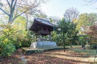 浄真寺の九品阿弥陀仏 - あだっちゃんの花鳥風月