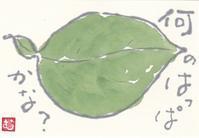 葉っぱ「何の葉っぱかな?」 - ムッチャンの絵手紙日記