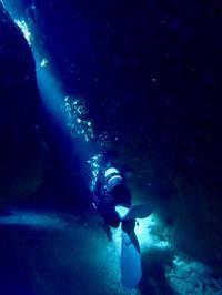 海の中で光を感じる - ブルちゃんのログ