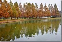 水上公園 - 趣味を楽しみながら