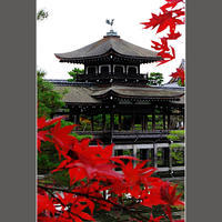 泰平閣の紅葉 - HIGEMASA's Moody Photo