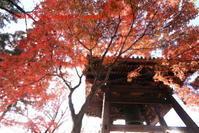 真如堂に行く2020年12月-5 - 写楽彩2