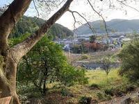 墓参り - 日本の心(団塊の世代)
