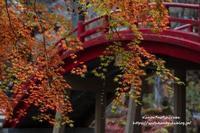 赤い橋 - *花音の調べ*