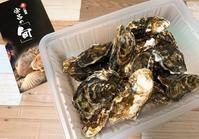 牡蠣 - リラクゼーション マッサージ まんてん