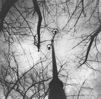 見上げる - Ippo Ippo