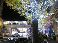 ちょっと寄り道・上大岡、冬の夜 - 神奈川徒歩々旅
