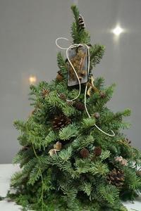 クリスマスツリーWS&よしお商店盛況終了、ありがとうございました - お花に囲まれて