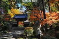 古刹・妙安寺の紅葉 - 四季彩の部屋Ⅱ