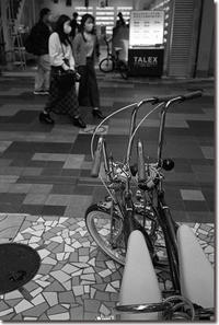 Bicycles - Hare's Photolog