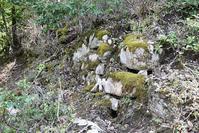 天橋立を望む丹後八幡山城跡。その3<主郭~帯曲輪> - 坂の上のサインボード