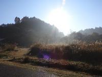 寒さを溶かす太陽 - 千葉県いすみ環境と文化のさとセンター