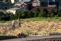 岳の棚田~秋収穫編~ - ながさき徒然考 巻乃四