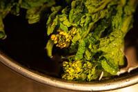 ふくらみ - 日々の皿