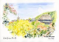 清水寺の紅葉 - 風と雲