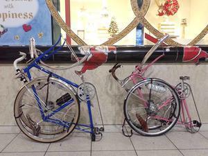 娘と輪行サイクリング - シクロツーリスト&ランドヌールときどき模型の製作日記
