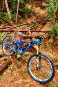 e-mountainbike dreamin XXXXXVI - www.k-bros.org