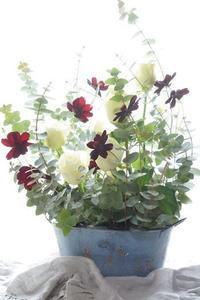 お帰りなさい(#^.^#) - お花に囲まれて