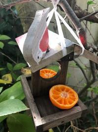 小鳥 - 花の窓