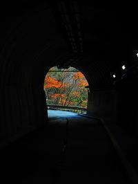寸又峡秋の散歩道 - 風の香に誘われて 風景のふぉと缶