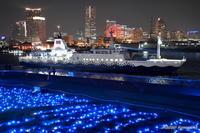 クリスマスムードあふれる横浜港とさるびあ丸 - カメラと会いに行く