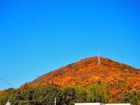 鬼の首が埋まっていた「白山神社」 - つれづれ日記