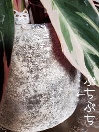 つむじ - 素人木工雑貨と犬猫日記