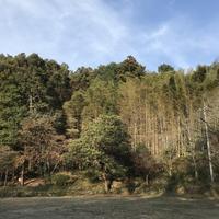 冬キャンプ - ぱーむらいふ