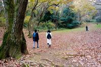 城山公園八の丸あたり - M8とR-D1写真日記